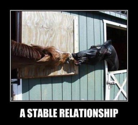 stablerelationship